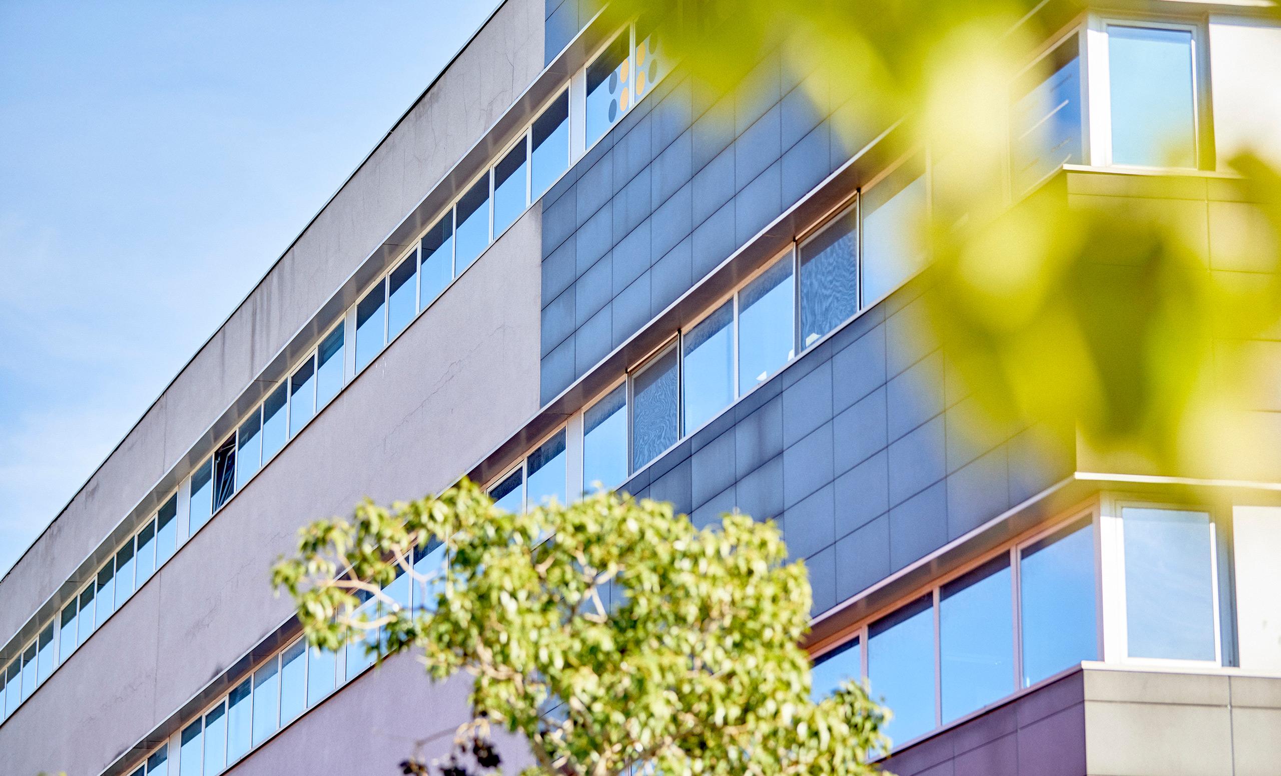 Oficinas de Laksmi Services Servicios Inmobiliarios integrales en Palma de Mallorca